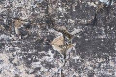 黑暗的肮脏的表面 大长的裂缝 库存图片