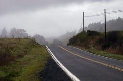 黑暗的雾路 免版税库存照片
