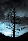黑暗秋天 库存照片