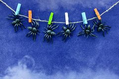黑橡胶蜘蛛玩具在蓝色天鹅绒纸背景的五颜六色的晒衣夹垂悬与烟 万圣夜10月概念 库存图片