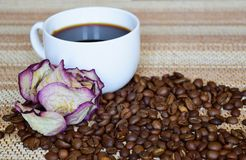黑浓咖啡和干的一白色杯上升了 免版税图库摄影