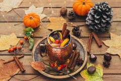 黑热的茶 苹果秋天对光检查袋装花瓶的构成干燥叶子 图库摄影
