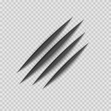 黑爪动物抓痕刮轨道 猫或老虎抓痕爪子形状 四个钉子踪影 向量 库存例证