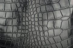 黑爬行动物皮革纹理有背景的 免版税图库摄影