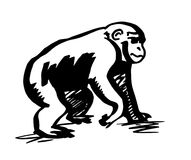 黑猩猩 猴子剪影 皇族释放例证
