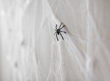 黑玩具蜘蛛的万圣夜装饰在网的 免版税库存照片