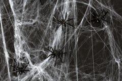 黑玩具蜘蛛的万圣夜装饰在网的 免版税库存图片