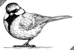 黑白刻记被隔绝的山雀传染媒介例证 库存例证