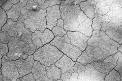 黑白干燥高明的土壤 免版税库存图片
