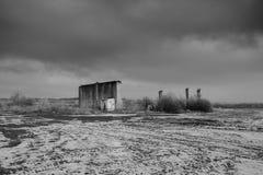 黑白自然摄影 免版税库存图片