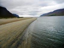 黑白沙滩在冰岛 库存照片