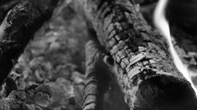 黑白灼烧的火木头和炭烬 库存图片