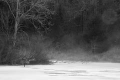 黑白的有薄雾的池塘 免版税库存照片