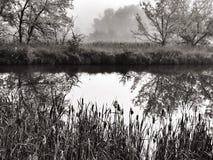 黑白的有雾的池塘 库存照片