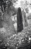 黑白的秋天坟园 库存照片