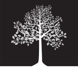 黑白结构树,剪影,夏天 库存照片