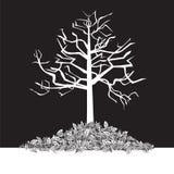 黑白结构树-冬天 免版税库存图片