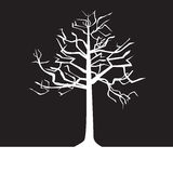 黑白结构树-春天 免版税库存图片