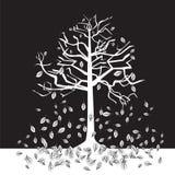 黑白结构树-秋天 免版税库存照片