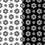 黑白花卉无缝的样式 被设置的背景 库存照片