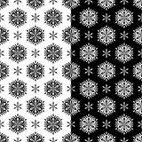 黑白花卉无缝的样式 被设置的背景 库存图片