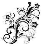 黑白花卉设计 库存图片