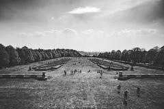 黑白英国春天庭院的视图 图库摄影