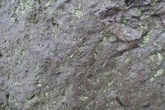 黑石头纹理与地衣的 免版税库存图片