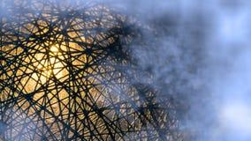 黑纤维被缠结的网络细节与奥秘焕发的在蓝色薄雾 免版税图库摄影
