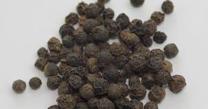 黑胡椒自转 豌豆用香料 在白色背景的宏指令 股票视频