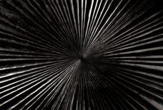 黑色与辐形形状纹理的被雕刻的木头 图库摄影