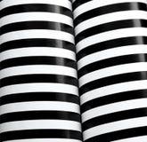 黑色列镶边白色 图库摄影