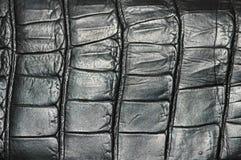 黑色可能用皮革包盖模式 免版税库存图片