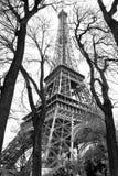 黑色埃菲尔・巴黎样式塔白色 免版税库存照片