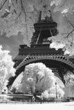 黑色埃菲尔照片白色 库存图片