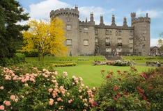 黑色城堡棋子反映白色 基尔肯尼 爱尔兰 免版税库存照片