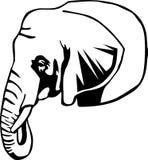 黑色大象白色 免版税库存照片