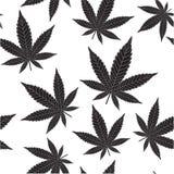 黑色大麻 库存图片