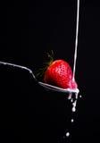 黑色奶油色草莓 免版税库存照片