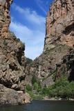 黑色峡谷gunnison 库存照片