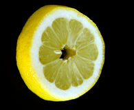 黑色柠檬片式 库存图片