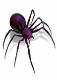 黑色查出的蜘蛛白色寡妇 库存照片