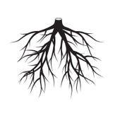 黑色根源树 也corel凹道例证向量 图库摄影