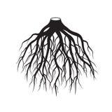 黑色根源树 也corel凹道例证向量 免版税库存照片