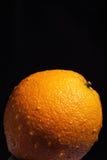 黑色橙色弄湿了 免版税库存照片