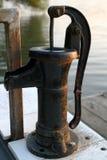 黑色清洁鱼泵 免版税图库摄影