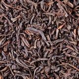 黑色烘干叶子茶 图库摄影