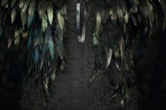黑色用羽毛装饰在黑鞋带织品束腰的发光在绿松石和绿色 库存照片