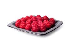 黑色的盘子莓 免版税库存图片