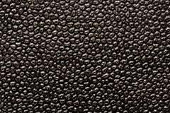 黑色皮革 免版税库存照片